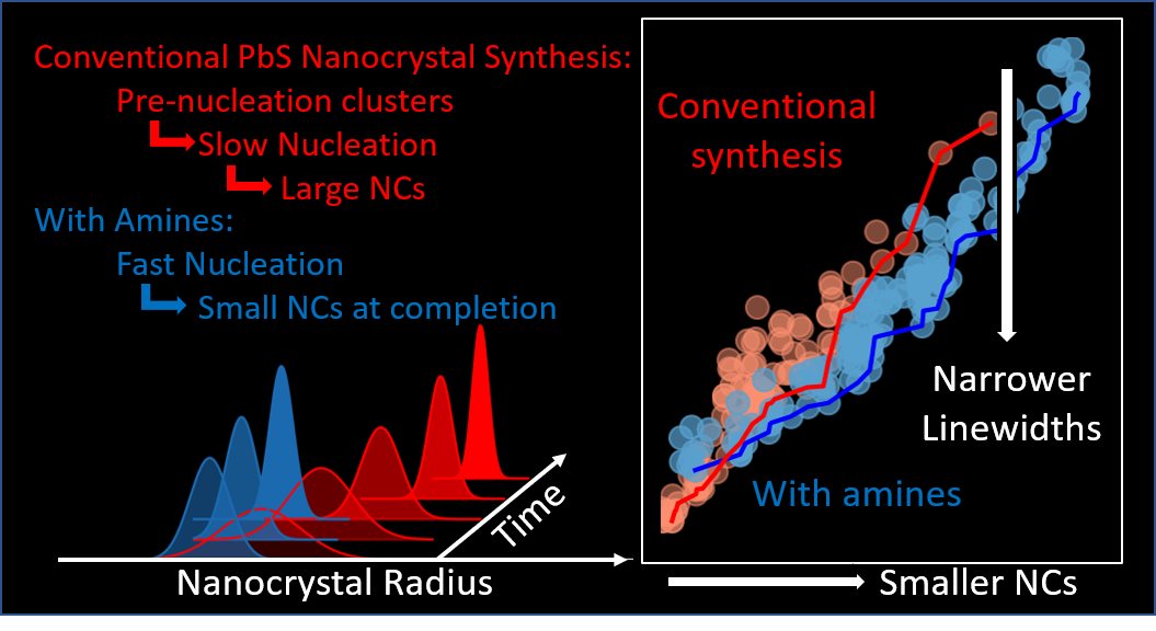 Graphs showing that amine additives accelerate PbS nanocrystal nucleation by suppressing a cluster intermediate, leading to narrower ensemble linewidths for small (diameter less than 4nm) nanocrystals